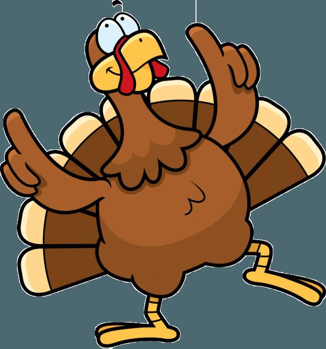 turkey-2